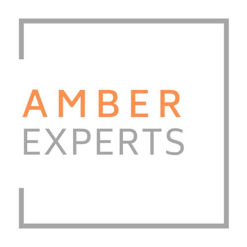 Logo Amber Experts