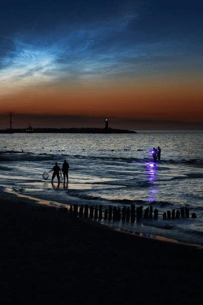 night_amber_fishing