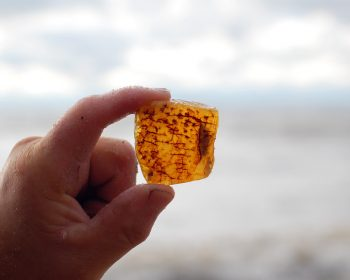 Baltic amber on the beach