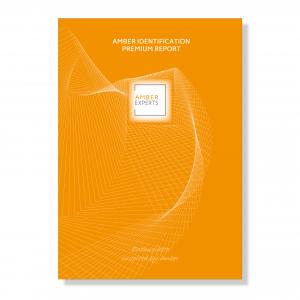 Amber Identification Premium Report